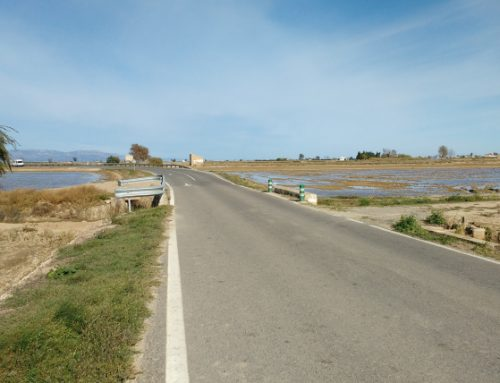 La Diputació millora la carretera TV-3401 de Deltebre a l'Ampolla