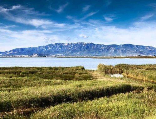 El Parc Natural del Delta de l'Ebre un exemple d'ecoturisme en el marc del projecte Land-Sea