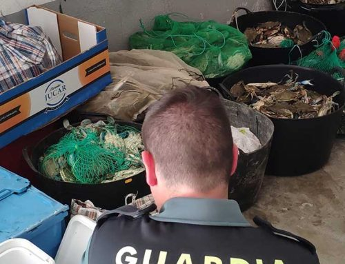 La Guàrdia Civil denuncia sis pescadors furtius d'origen xinès i decomissa 450 quilos de cranc blau