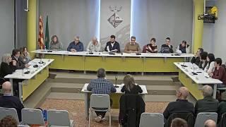 Plenari municipal 28/11/2018