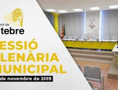 Ple Municipal 20/11/2019
