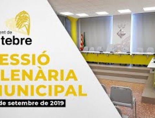 Ple Municipal 12/09/2019