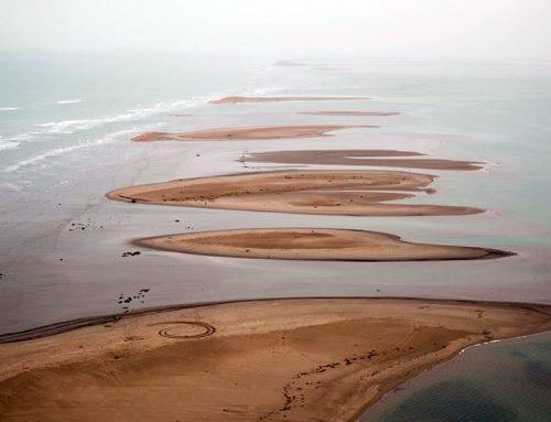 L'Estat destina 2 milions d'euros a reparar de forma urgent els estralls del temporal al delta de l'Ebre