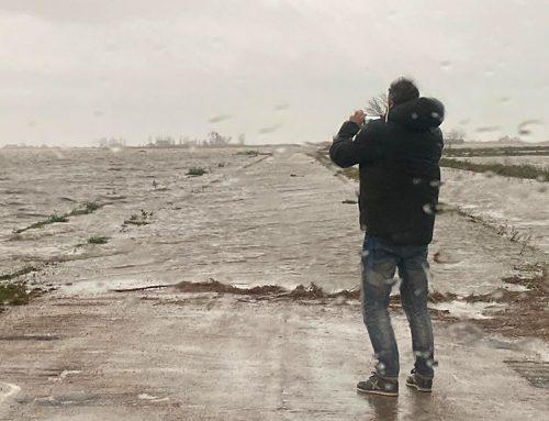 Unió de Pagesos xifra en 1,7 milions d'euros les pèrdues pel temporal als arrossars del delta de l'Ebre
