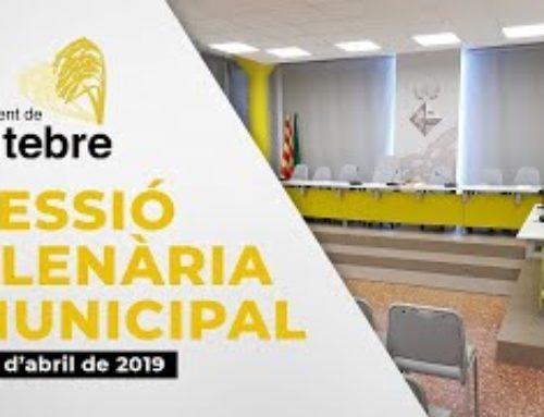Sessió plenària extraordinària | 29 d'abril de 2020