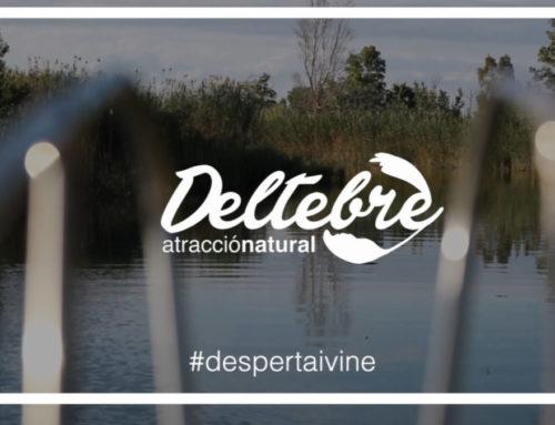Desperta i Vine, la nova campanya de promoció turística de Deltebre