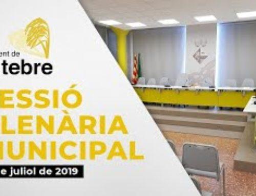 Plenari Municipal 01/07/2020